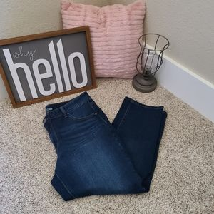 Time and True Size 16 Petite Straight Jeans
